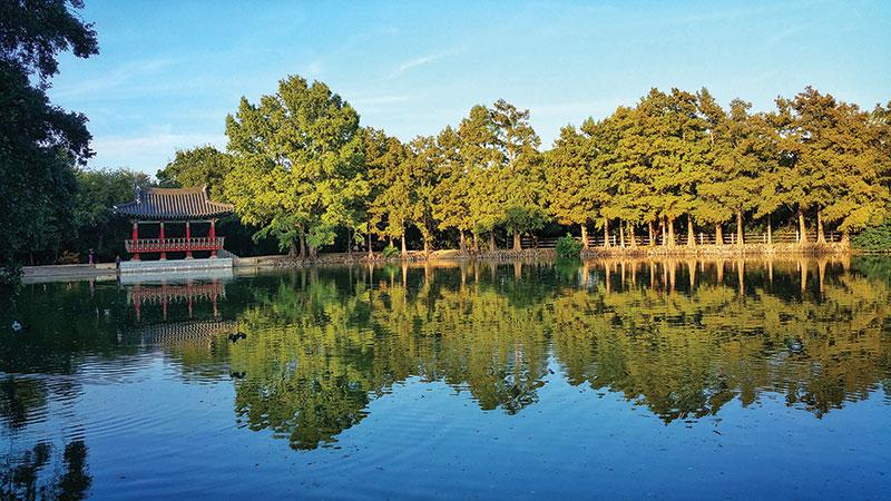 Best Parks: Denman Estate Park - San Antonio Magazine