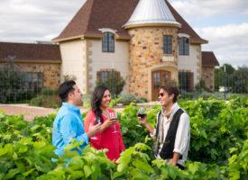 Celebrate Grape Harvest Season with a Visit to Fredericksburg